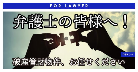 FOR LAWYER